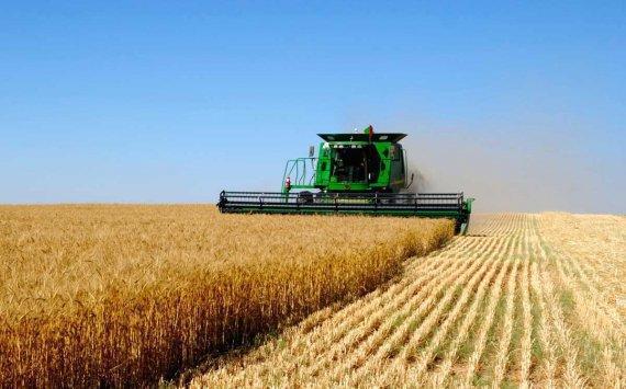 Русские аграрии из-за холодного лета потеряют 2,6 млрд. руб.