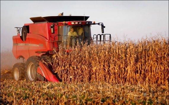 Экспорт продовольствия из Российской Федерации в прошлом году вырос на21%
